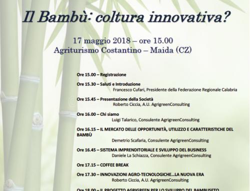 il Bambù: coltura innovativa?
