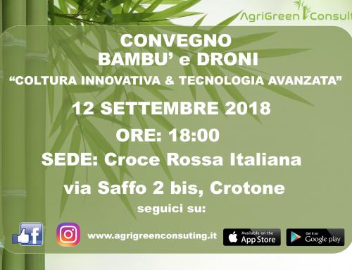 CONVEGNO Crotone: 12/09/2918- BAMBU' E DRONI