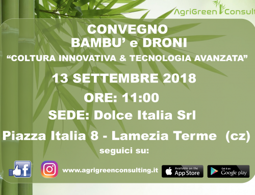 CONVEGNO Lamezia Terme: 13/09/2018- BAMBU' E DRONI